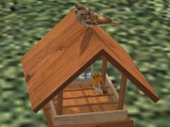 futterhaus mit vogel eep online shop zu. Black Bedroom Furniture Sets. Home Design Ideas